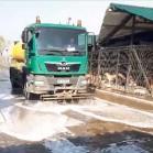 Acțiuni de curățenie. S-au spălat aleile din Adăpostul municipal Iași.